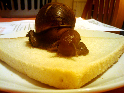 snail sandwich anyone